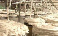 Neue Berichte der Clean Clothes Campaign dokumentieren Armutslöhne in Osteuropas Fashion Industrie