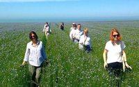В Тульской области появятся сразу десять заводов по переработке льна