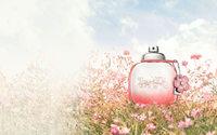 На 2020 год Interparfums (Montblanc, Jimmy Choo, Coach) прогнозирует объем продаж в 500 миллионов евро