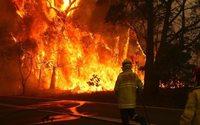 Kering пожертвует средства на борьбу с пожарами в Австралии