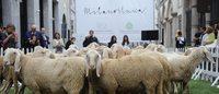 Pecore in Via Monte Napoleone per la 'Wool Week'