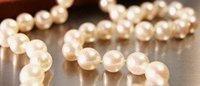 Decomisan 30.000 artículos de lujo falsos por valor de 10 millones de euros
