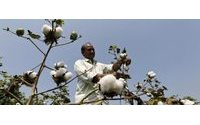 India cuts Monsanto cotton seed royalties despite threat to quit