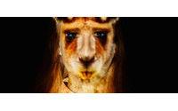 Stella Cadente présente Instinct, une exposition multisensorielle