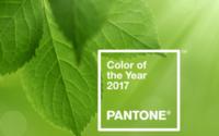 Pantone sacre le vert Greenery comme couleur de l'année 2017
