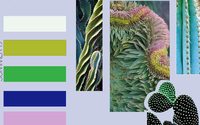 "Studio Annflor Sangan - ""Cactus "" - SS2019"