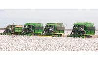 China vai reduzir cotas de importação de algodão para 2015